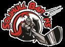 Solihull Barons Logo