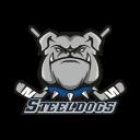 Sheffield Steeldogs