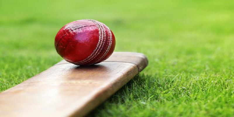 cricket ball 800w