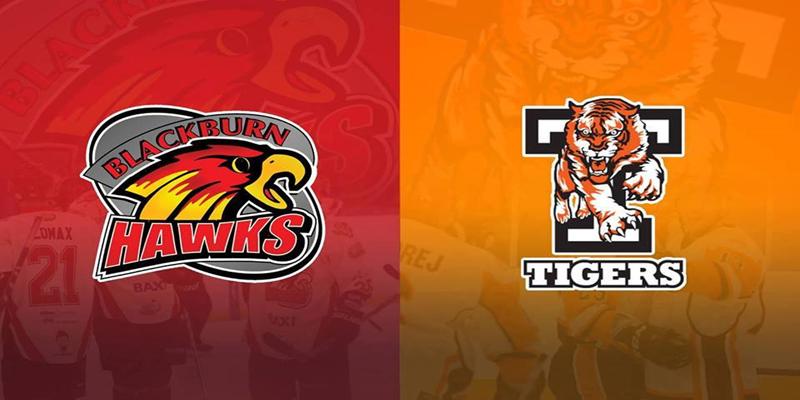 Hawks vs Tigers