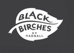 Black Birches 400x285