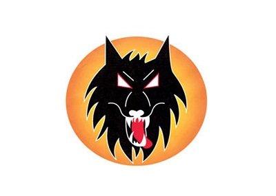wolverhampton 400x285