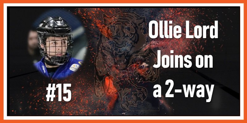 #15 Ollie Lord Signs 22-05-2019 800w