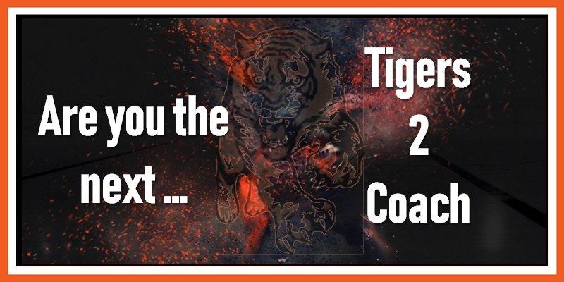 Next Tigers 2 Coach 17-05-2019 800w