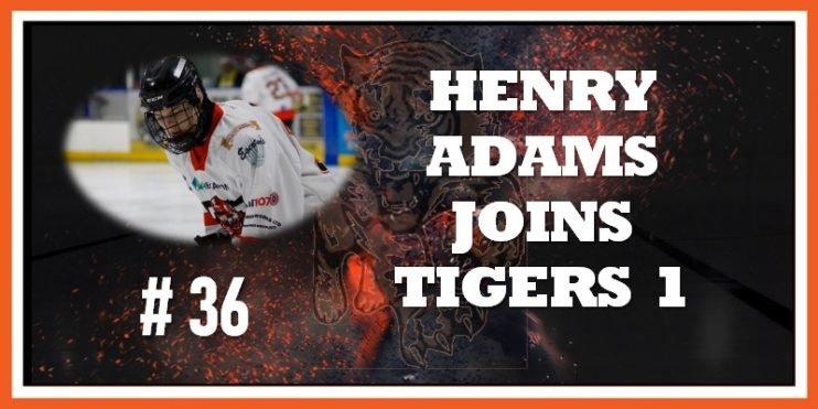 #36 Henry Adams Signs 14-08-2019 800w