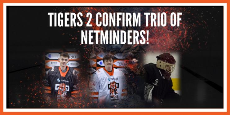 Telford Tigers Trio of Netminders