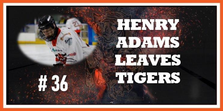 #36 Henry Adams Leaves 10-2019 800w