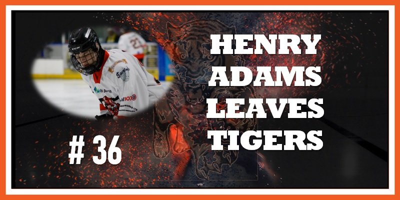 #36 Henry Adams Leaves 10-2019 800w