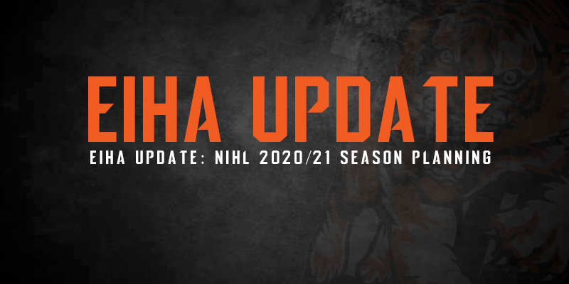 NIHL 2020/21 planning